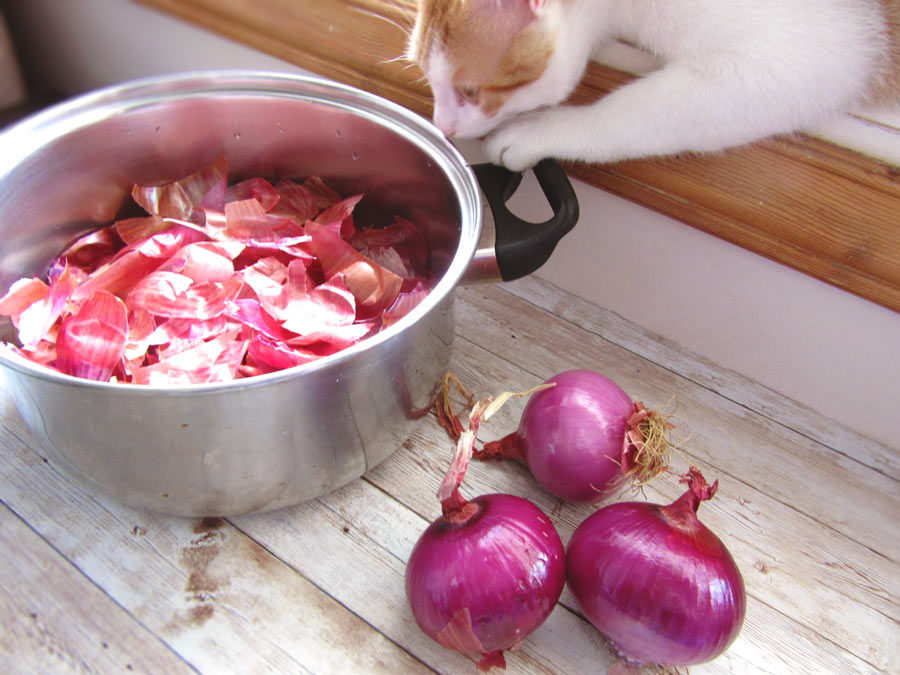 Onions And Onion Skins For Dyeing Eggs