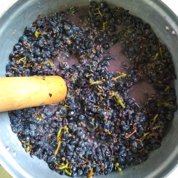 Making Grape Must