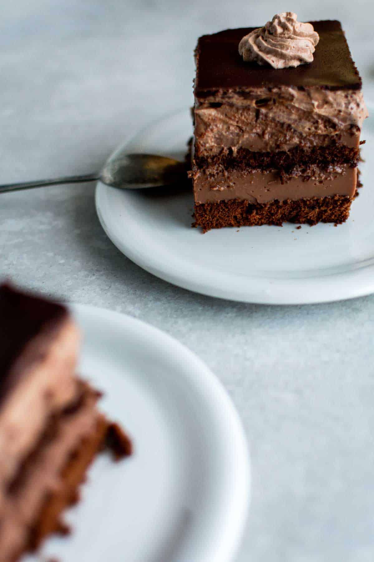 Creamy Cocoa Custard Cake